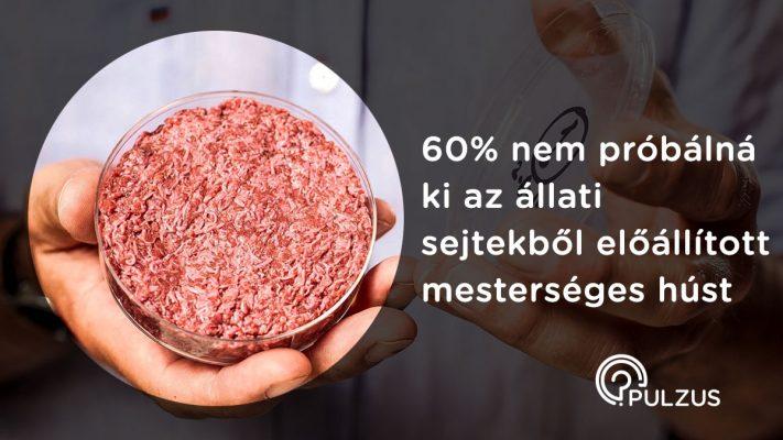 Pulzus kutatás - mesterséges hús