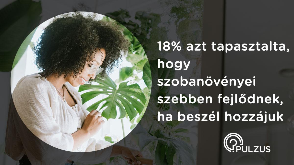 Pulzus kutatás - szobanövények