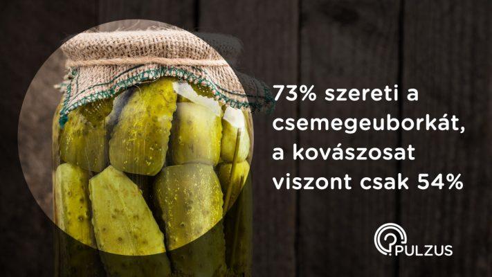 Kovászos uborka és csemegeuborka - Pulzus kutatás