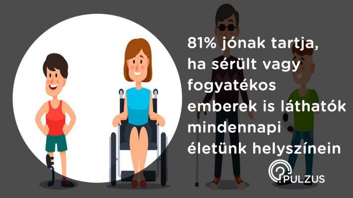 Sérült vagy fogyatékos emberek mindennapi életünkben - Pulzus kutatás