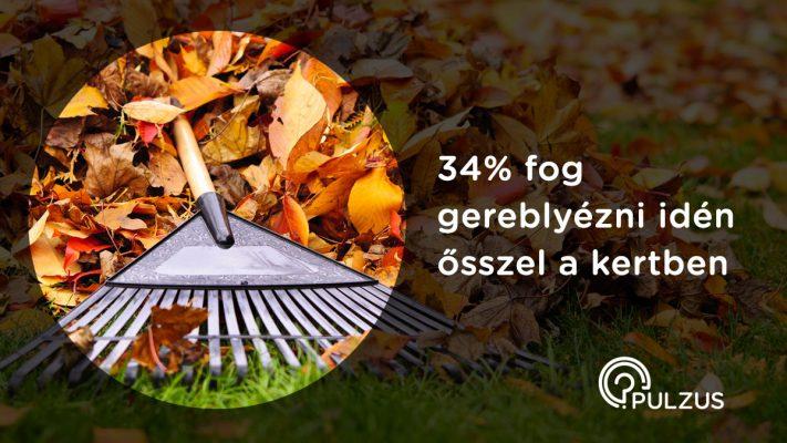 Gereblyézni idén ősszel a kertben - Pulzus kutatás