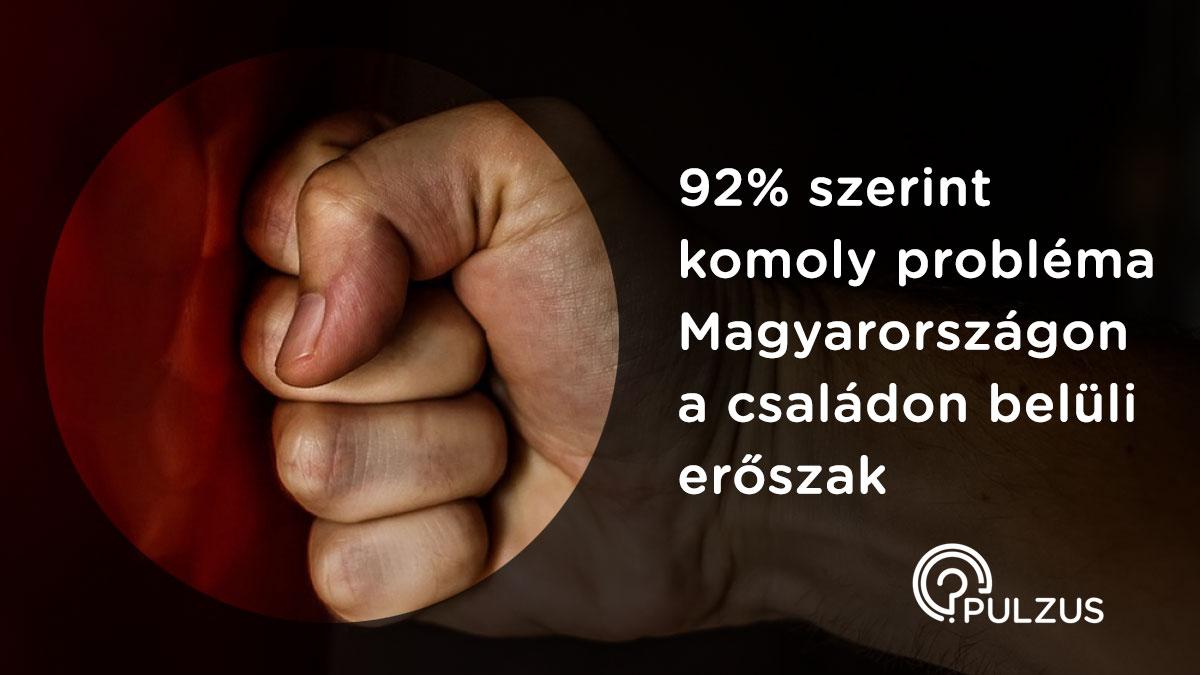 Családon belüli erőszak Magyarországon - Pulzus kutatás