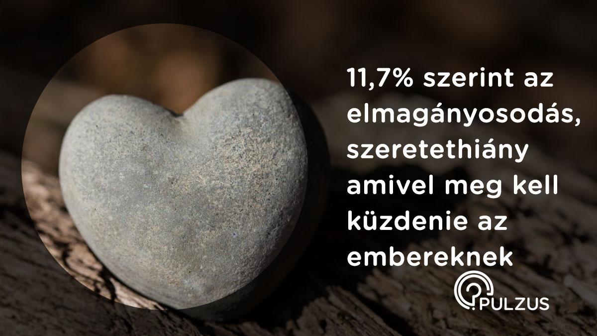 Elmagányosodás, szeretethiány - Pulzus kutatás
