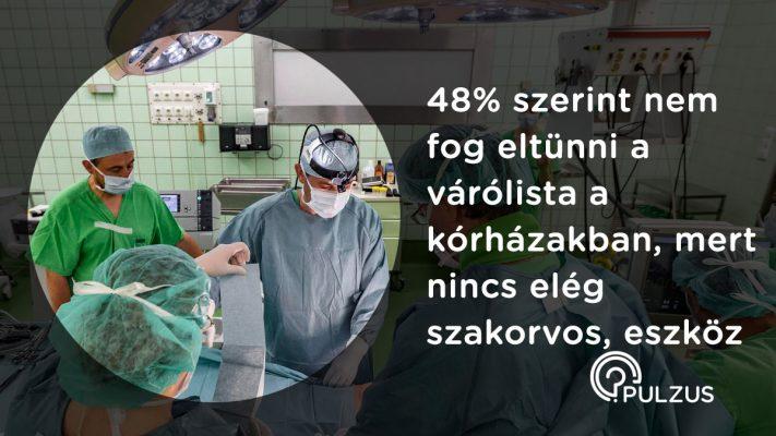 Várólisták a kórházakban - Pulzus közvéleménykutatás