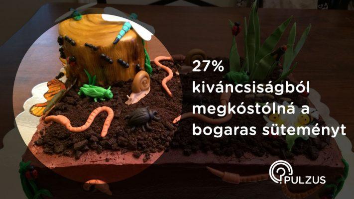Bogaras sütemény megkóstolása - Pulzus közvéleménykutatás