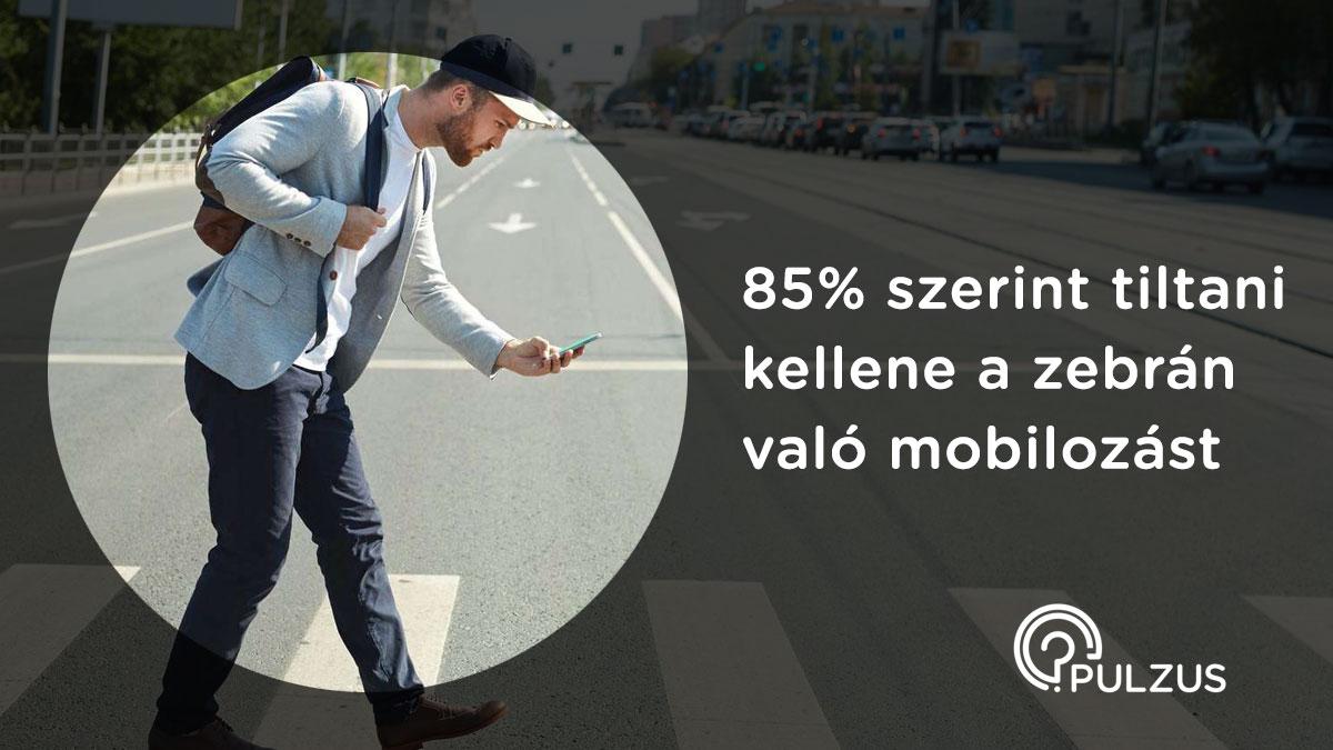 Mobilozás tiltása a zebrán - Pulzus közvéleménykutatás